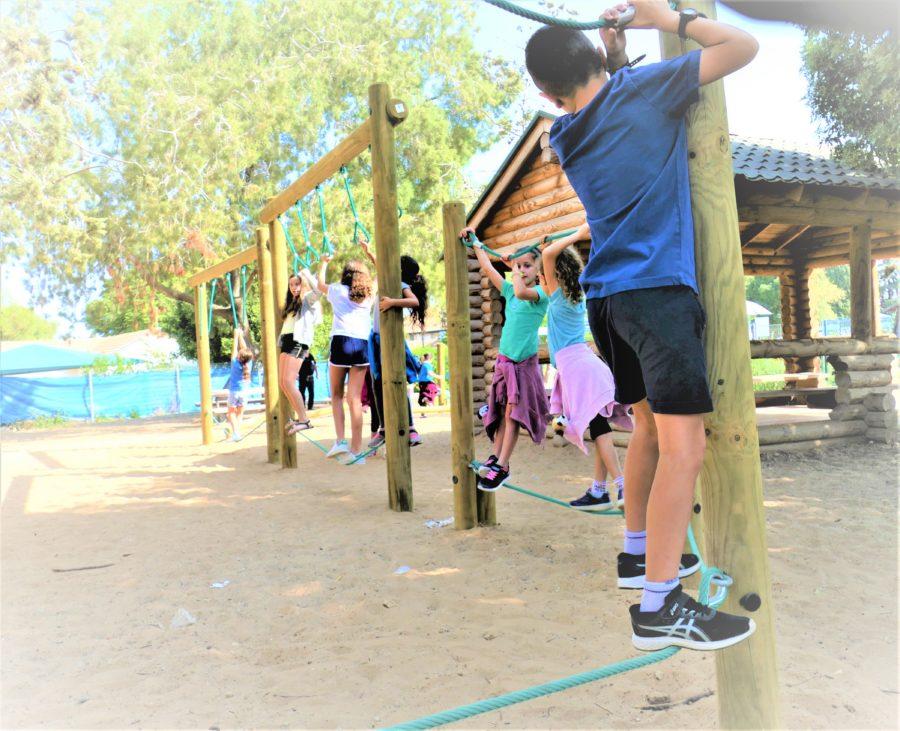 מסלול אתגרי מעץ