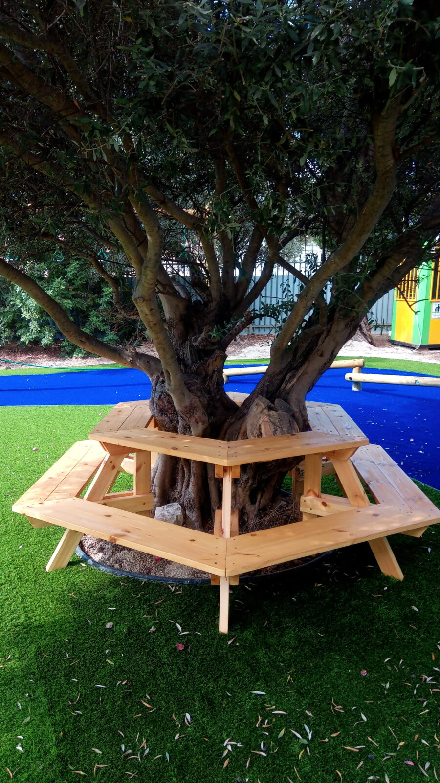 """שולחן וספסל סביב העץ – ביה""""ס אחוות אחים קרית מלאכי"""