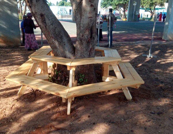 ספסל סביב העץ- ביהס קפלן חדרה